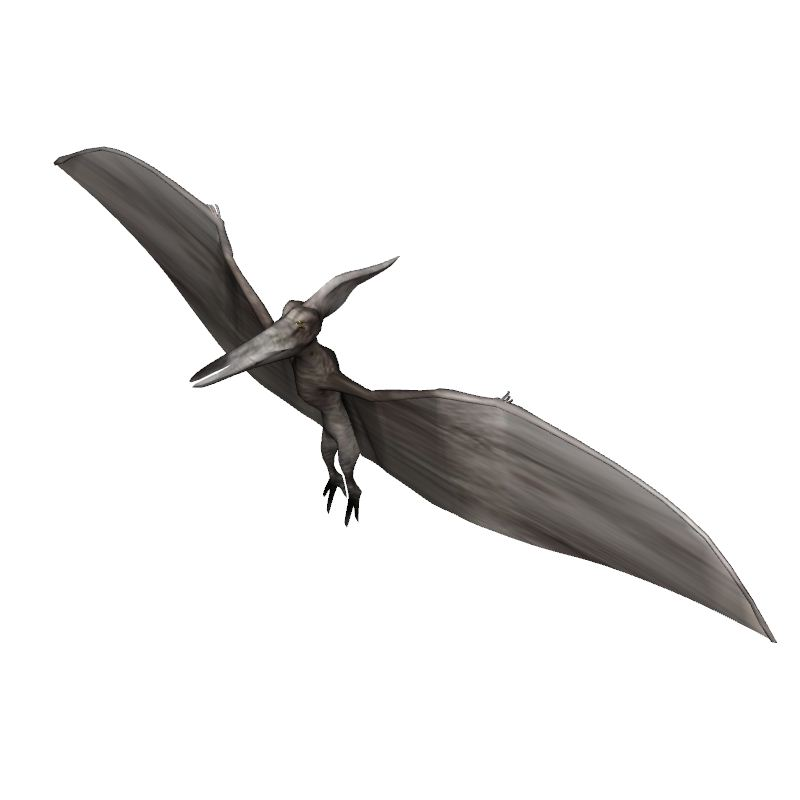Pteranodon | Flying and Gliding Animals | Biology | 3D model | eonexperience